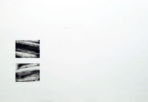 228 [W40]